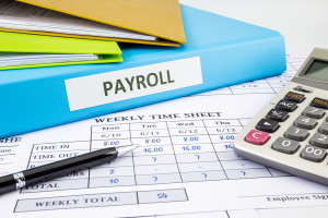 and payroll summary report human resources concept